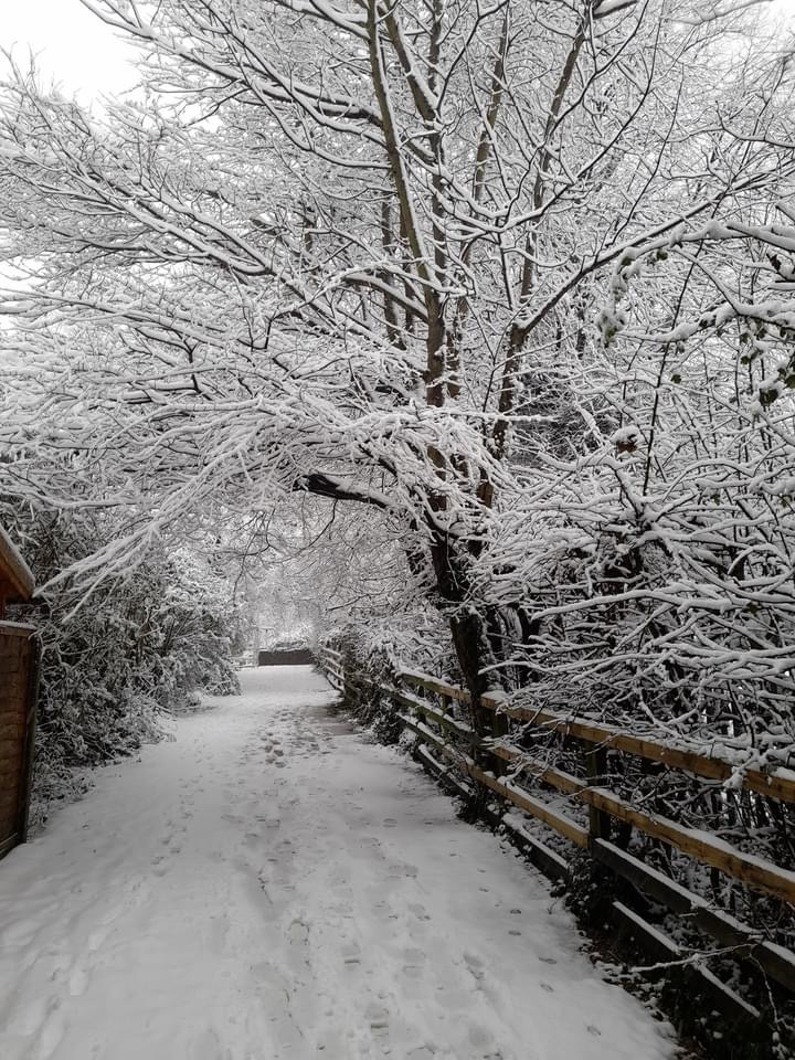 Path at the back of Gildersome Primary School with footprints in the snow