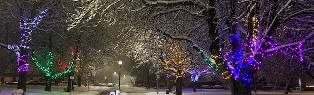 Town Street at night lit up by colourful lights in the trees in the snow